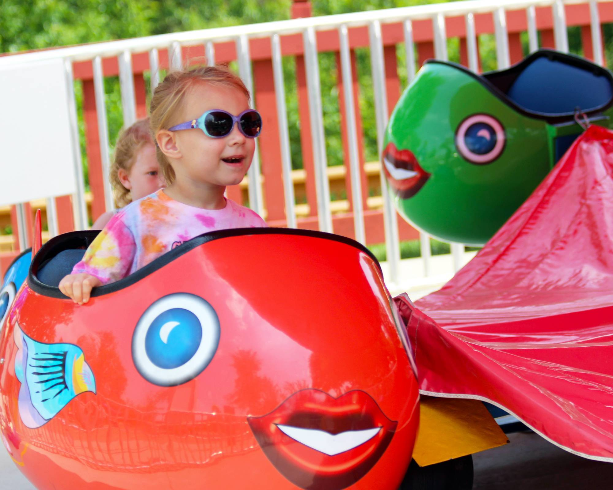 Dancer's Fish | Holiday World & Splashin' Safari