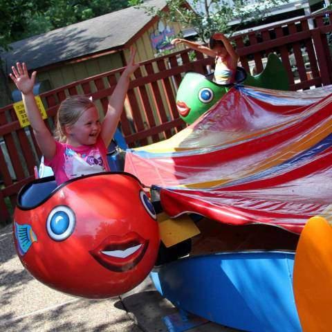 Dancer's Fish   Holiday World & Splashin' Safari