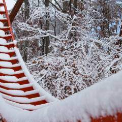 Snowy-Track