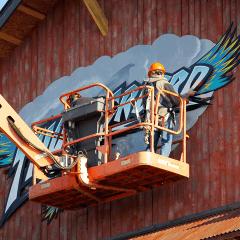Thunderbird-Logo-Installation-Bird-is-the-Word