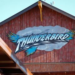 Thunderbird-Logo-Installation-Complete-Logo