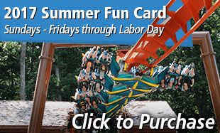 Click to purchase your 2017 Summer Fun Card!