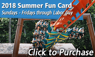 Click to purchase your 2018 Summer Fun Card!