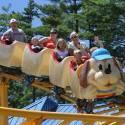 Howler roller coaster
