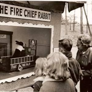 Fire Chief Rabbit