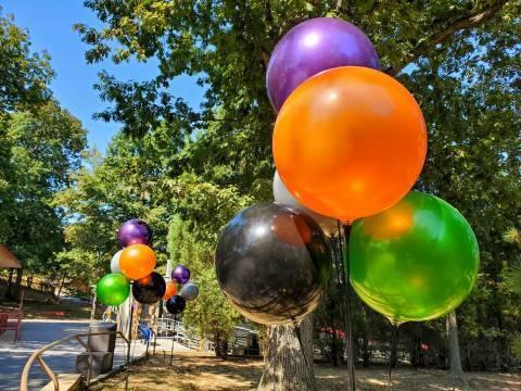 Balloons Walkway