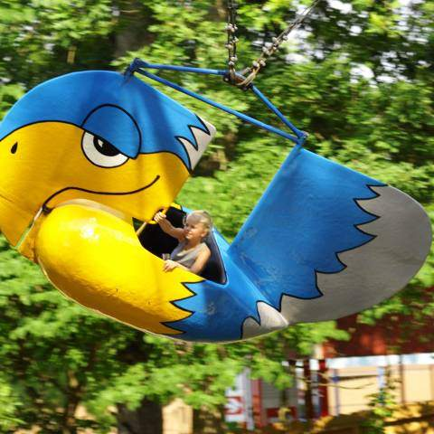 Eagles Flight | Holiday World & Splashin' Safari