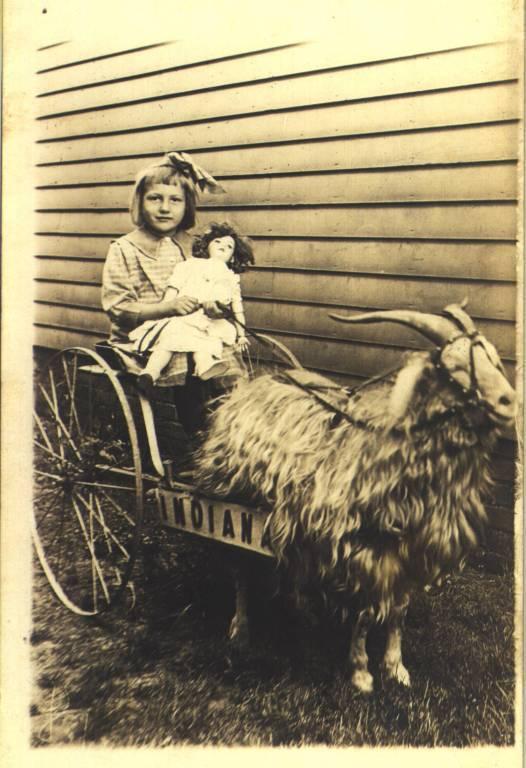 Frieda Foertsch with Goat Cart
