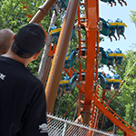 HoliWood Nights | Holiday World & Splashin' Safari
