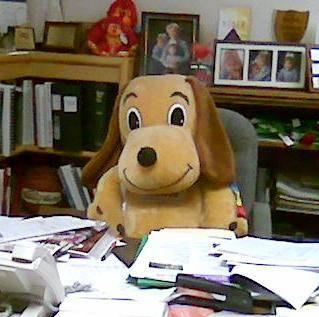 Holidog at desk