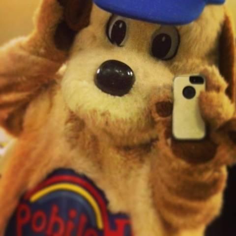 Holidog selfie