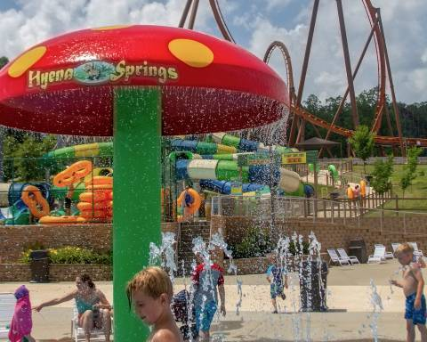 Hyena Springs | Holiday World & Splashin' Safari