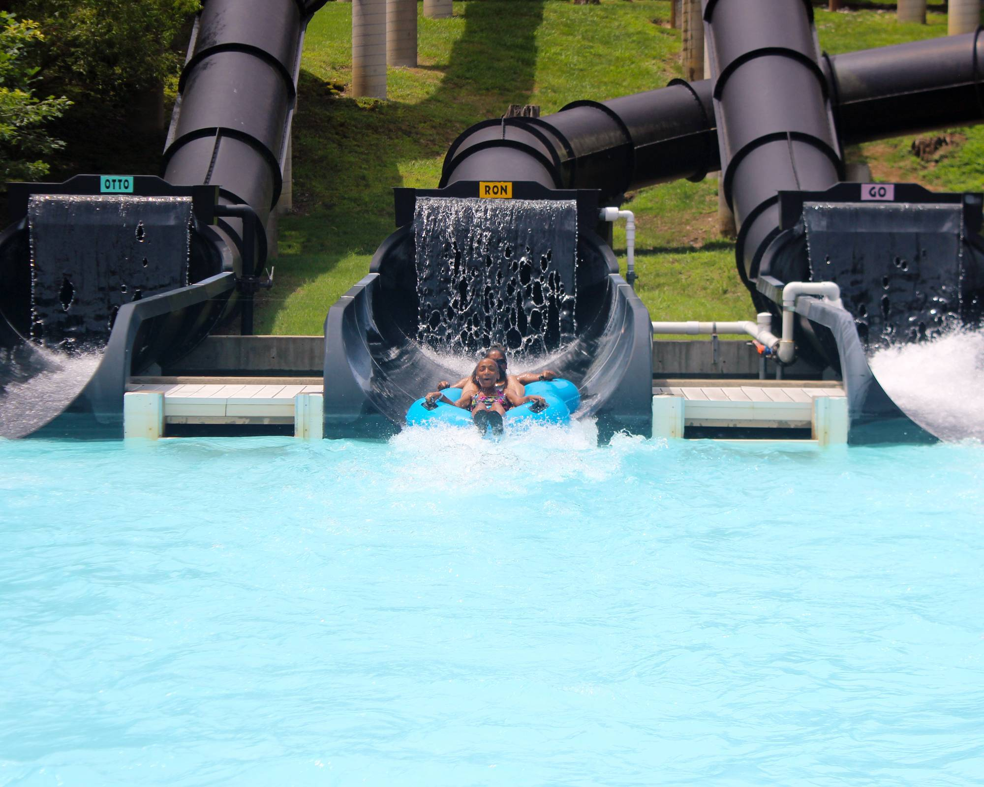 Otorongo | Holiday World & Splashin' Safari