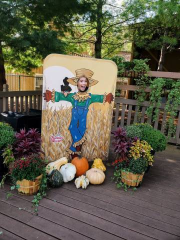 Sabrina Scarecrow