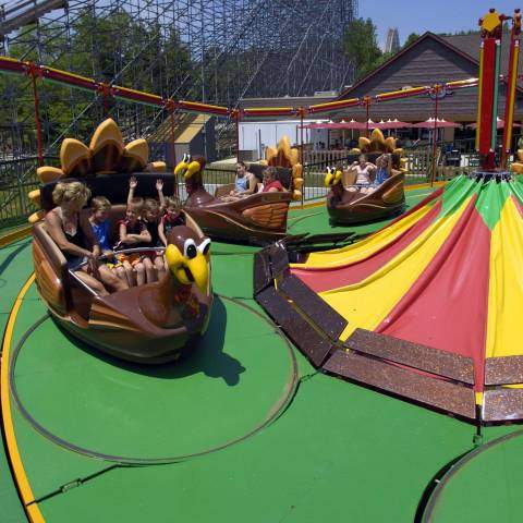 Turkey Whirl | Holiday World & Splashin' Safari