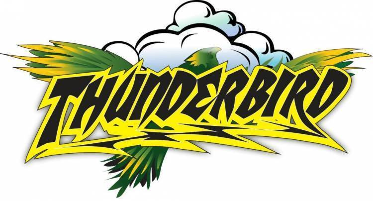 Early Thunderbird Logo Design | Holiday World & Splashin' Safari